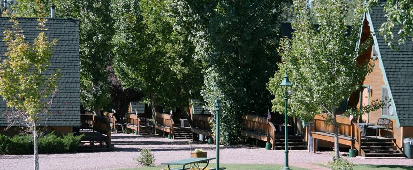 Cabins On Strawberry Hill Offer Pet Friendly Cabin Lodging
