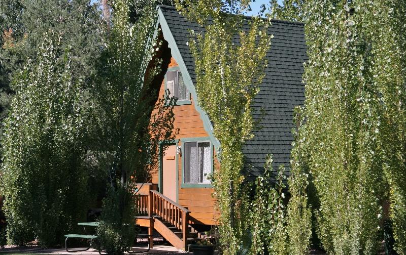 Flagstaff Cabin Rentals Pet Friendly Cabins On Strawberry Hill